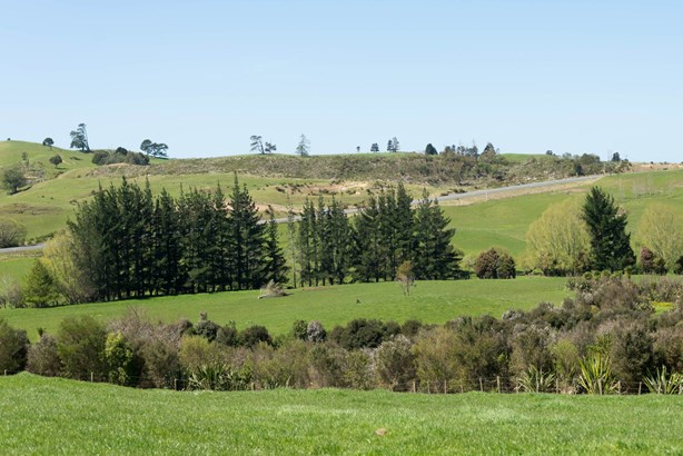 8 Meadows Lane, Pakaraka, Northland - NZL (photo 4)