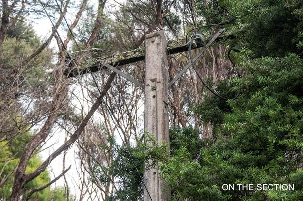 14 Napuka Road, Henderson Valley, Auckland - NZL (photo 4)