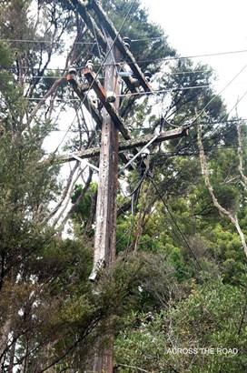 14 Napuka Road, Henderson Valley, Auckland - NZL (photo 5)