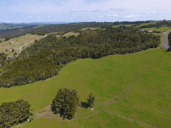 880 Wiroa Road, Kerikeri, Northland - NZL (photo 4)
