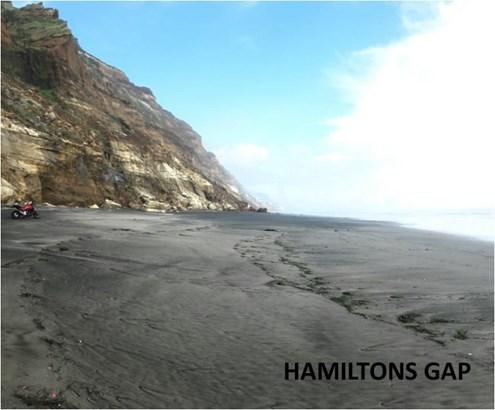 295 Hamilton Road, Awhitu Central, Auckland - NZL (photo 4)