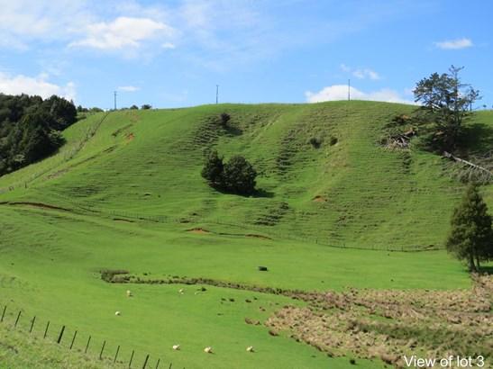 Millington Road, Maunu, Northland - NZL (photo 1)