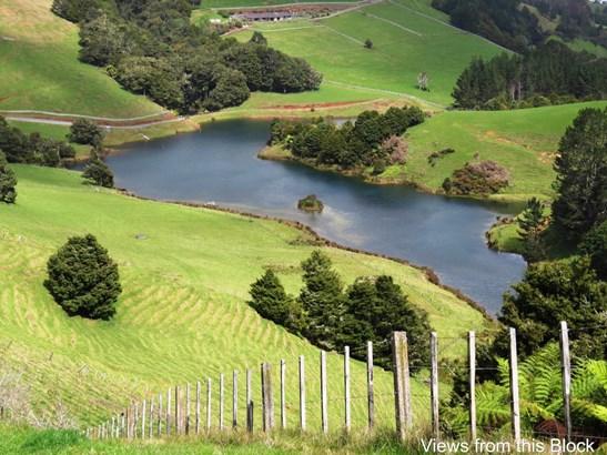 Millington Road, Maunu, Northland - NZL (photo 3)