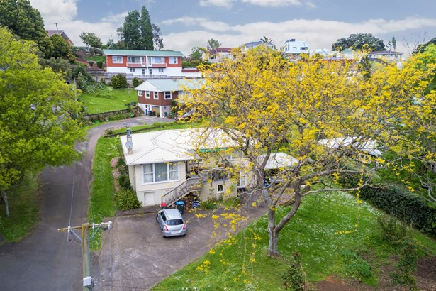 24 & 26 Domain Road, Panmure, Auckland - NZL (photo 2)