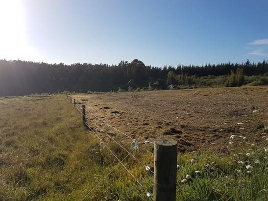 Otaha Road, Takou Bay, Northland - NZL (photo 3)