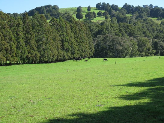 Lot4/dp211 Whangaripo Valley Road, Whangaripo, Auckland - NZL (photo 2)