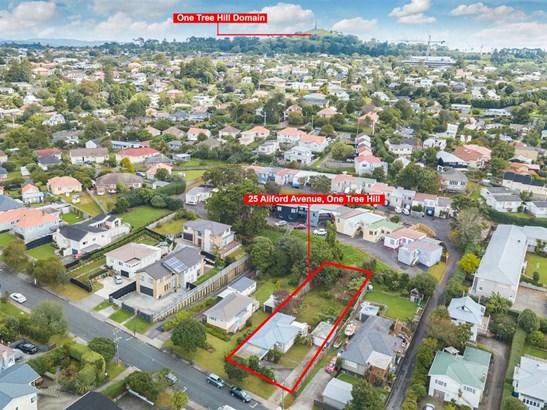 25 Aliford Avenue, One Tree Hill, Auckland - NZL (photo 3)