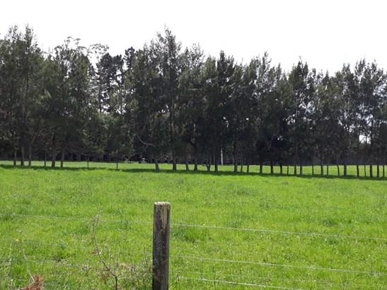 Onekura Road, Waipapa, Northland - NZL (photo 1)