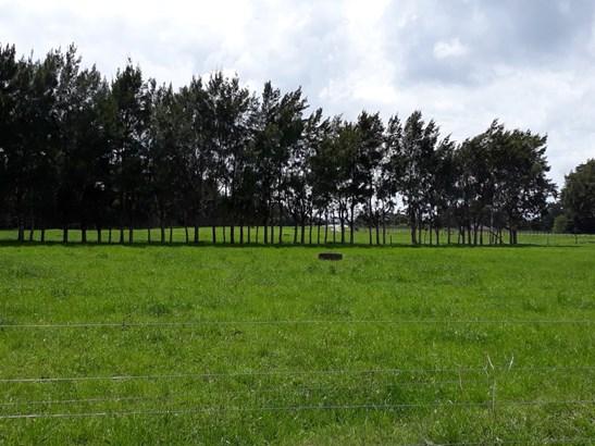 Onekura Road, Waipapa, Northland - NZL (photo 3)