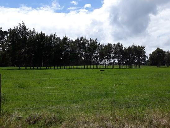 Onekura Road, Waipapa, Northland - NZL (photo 4)
