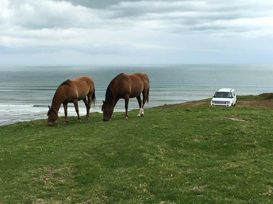 710 Whiriwhiri Road, Otaua, Auckland - NZL (photo 1)