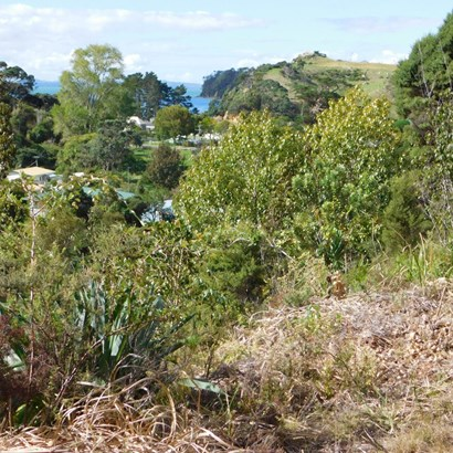Lot 9 Gap Road, Orua Bay, Auckland - NZL (photo 4)