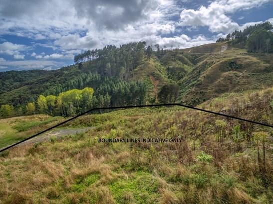 297 Ara Kotinga, Whitford, Auckland - NZL (photo 5)