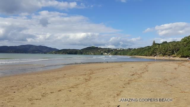 6 St Johns Road, Coopers Beach, Northland - NZL (photo 3)