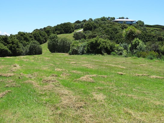 Matapouri Road, Matapouri, Northland - NZL (photo 5)