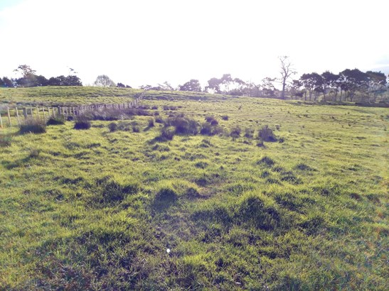 Lot 14 Bawden Road, Dairy Flat, Auckland - NZL (photo 5)