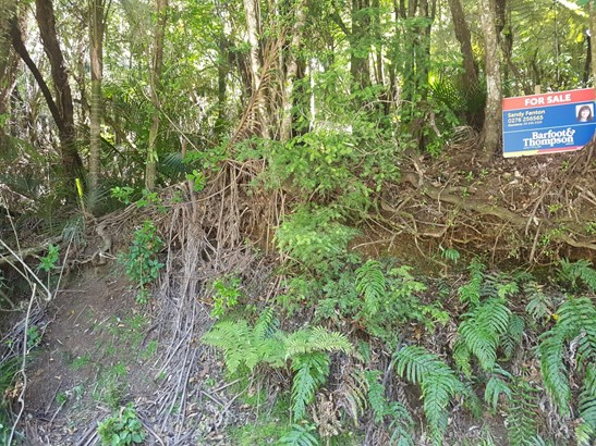 138 Opanuku Road, Henderson Valley, Auckland - NZL (photo 4)
