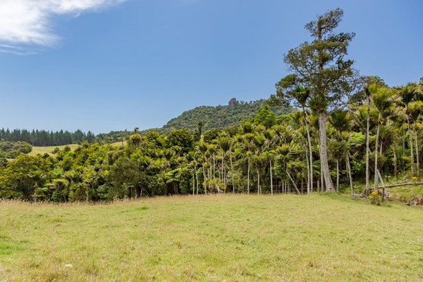 3600 State Hwy 10, Kaeo, Northland - NZL (photo 4)
