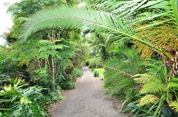 92 Awaroa Road, Helensville, Auckland - NZL (photo 2)
