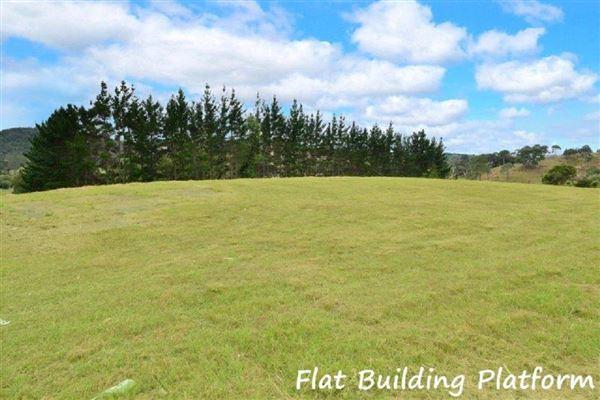 411 Pine Valley Road, Dairy Flat, Auckland - NZL (photo 5)