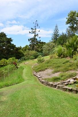 43 The Bullock Track, Mahurangi West, Auckland - NZL (photo 4)