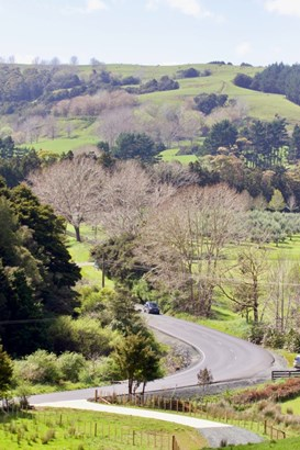 Lot8/sub-6 Whangaripo Valley Road, Whangaripo, Auckland - NZL (photo 5)