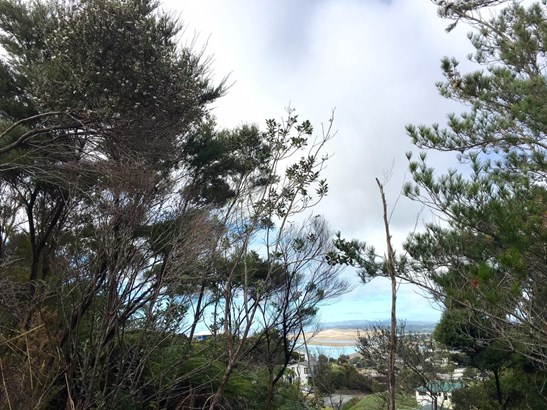 71 Cullen Street, Mangawhai Heads, Northland - NZL (photo 5)