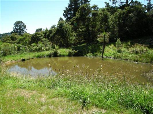 277 Okura River Road, Okura, Auckland - NZL (photo 4)