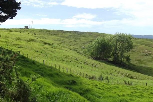 Lot 1 Baldrock Road, Kaiwaka, Northland - NZL (photo 5)