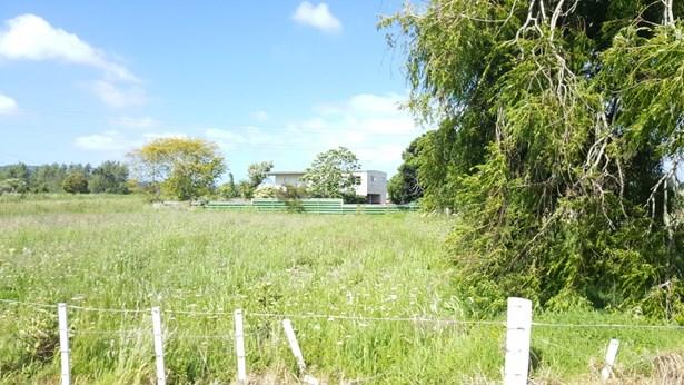 479 Porchester Road, Randwick Park, Auckland - NZL (photo 4)