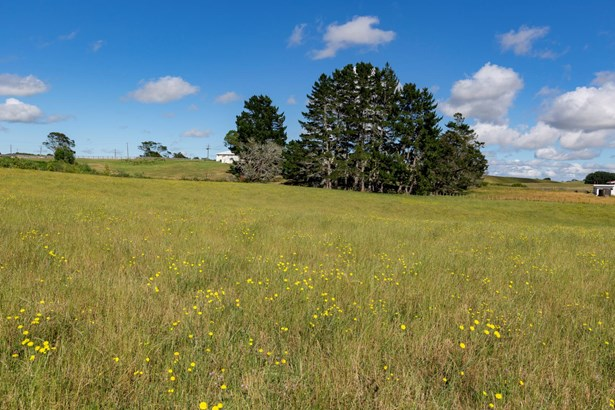 368c Waerenga Road, Te Kauwhata, Waikato District - NZL (photo 2)