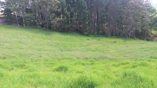 219 Foley Quarry Road, Dairy Flat, Auckland - NZL (photo 4)