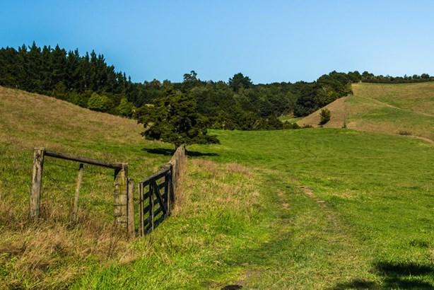62d Old Coach Road, Ramarama, Auckland - NZL (photo 5)