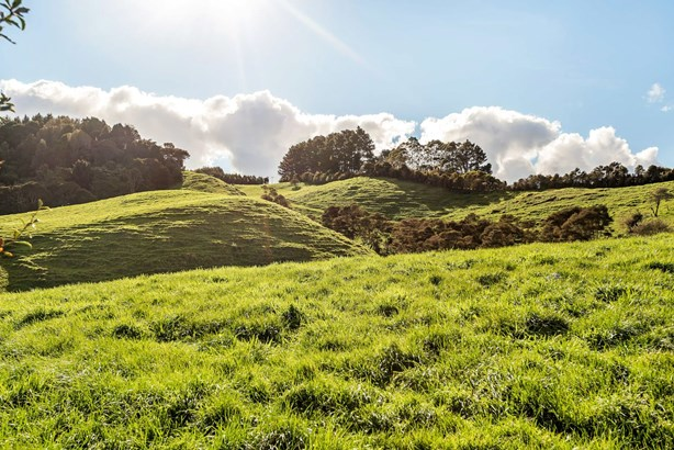 Lot 3/ 133 Pinnacle Hill Road, Bombay, Auckland - NZL (photo 5)