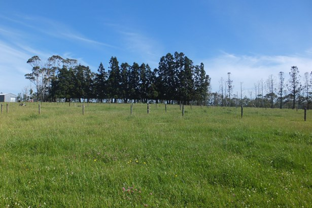 430 Pungaere Road, Kerikeri, Northland - NZL (photo 4)