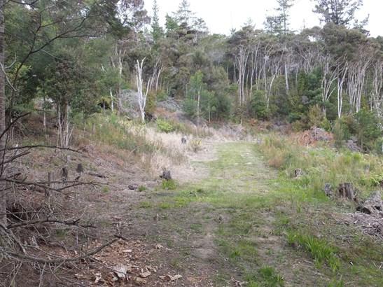 63 Wainui Road, Whangaroa, Northland - NZL (photo 5)