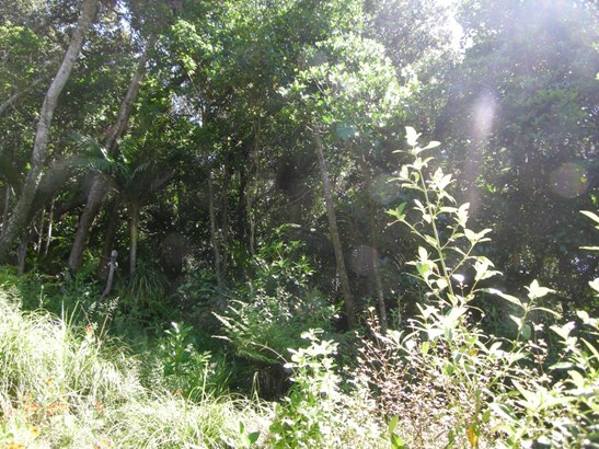31 Wilma Road, Ostend, Auckland - NZL (photo 5)