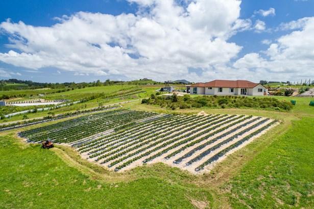 603a Settlement Road, Kaiwaka, Northland - NZL (photo 1)