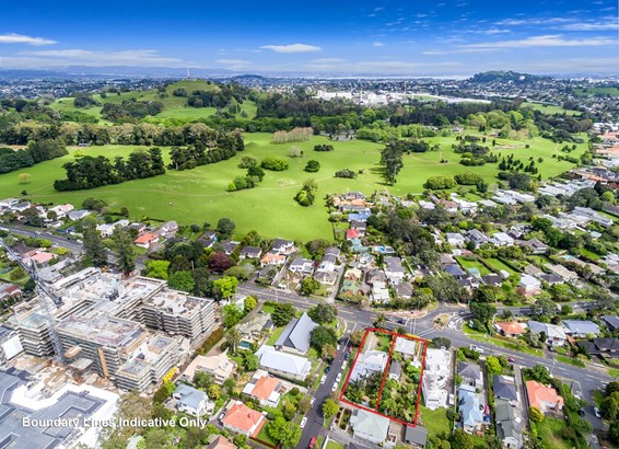 197&199 Campbell Road, Greenlane, Auckland - NZL (photo 2)