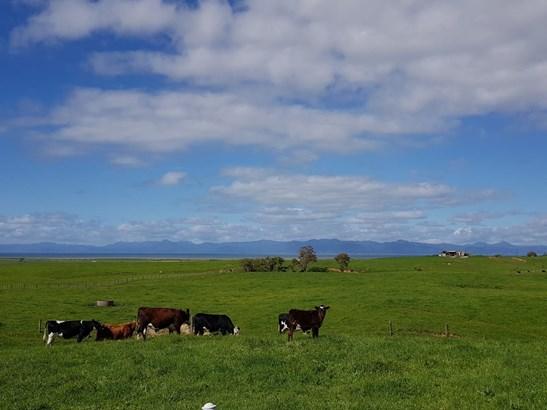 1152 Miranda Road, Miranda, Auckland - NZL (photo 1)