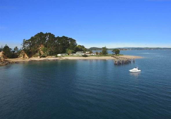 Pakatoa Island, Auckland - NZL (photo 3)