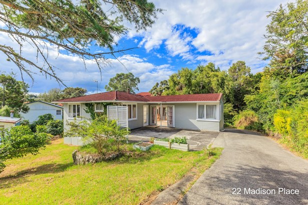 22+24 Madison Place, Forrest Hill, Auckland - NZL (photo 1)