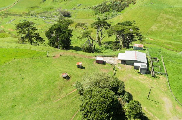 459a Karioitahi Road, Waiuku, Auckland - NZL (photo 4)