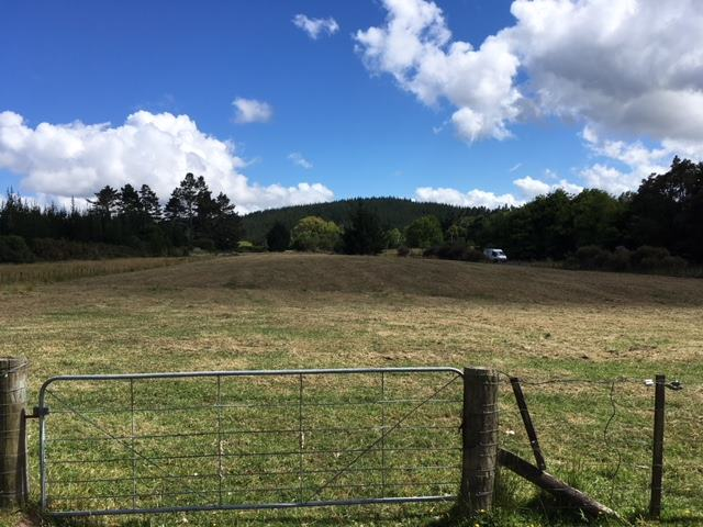 Lot 1/169 Mill Flat Road, Coatesville, Auckland - NZL (photo 1)
