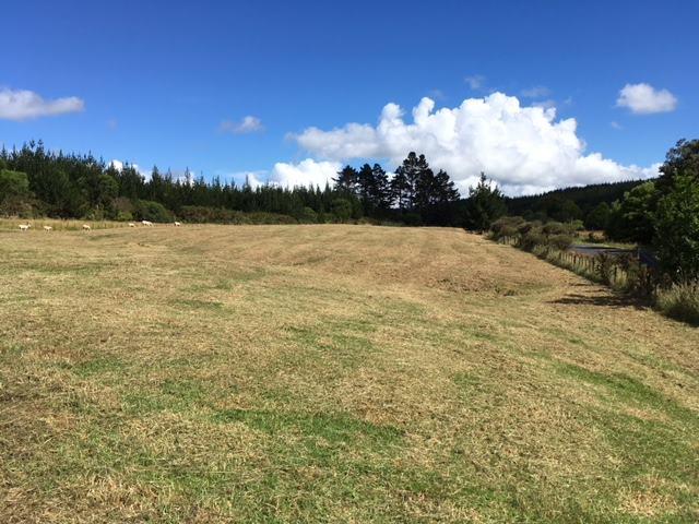Lot 1/169 Mill Flat Road, Coatesville, Auckland - NZL (photo 5)