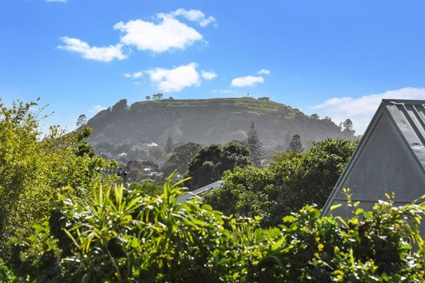 49 Shackleton Road, Mt Eden, Auckland - NZL (photo 5)