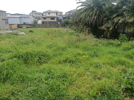 29a New Windsor Road, Avondale, Auckland - NZL (photo 3)