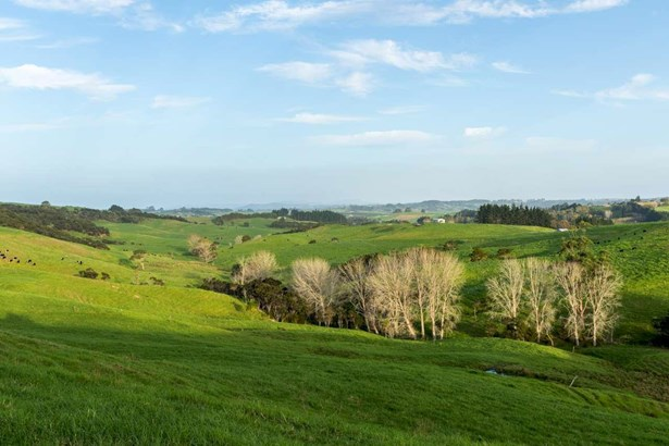 196 Tara Road, Mangawhai, Northland - NZL (photo 3)