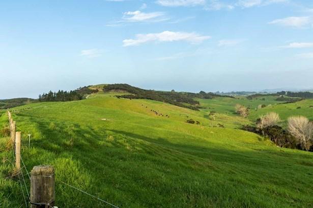 196 Tara Road, Mangawhai, Northland - NZL (photo 4)
