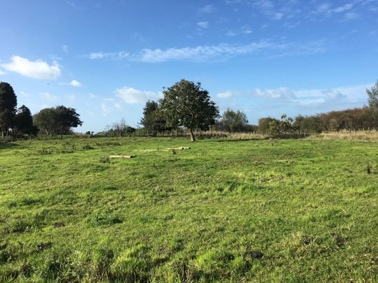 Lot/13 Churchill East Road, Rangiriri, Waikato District - NZL (photo 4)